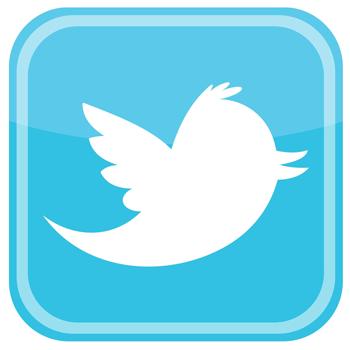 Twitter Icon with bird